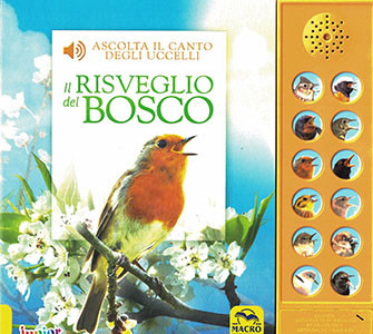Il Risveglio del Bosco