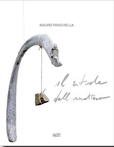 Mauro Panichella