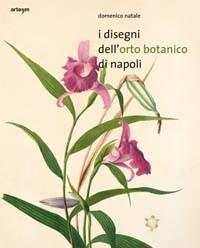 i disegni dell'orto botanico di napoli