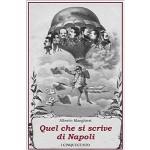 Quel che si scrive di Napoli