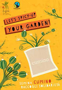 Let's spicy-up your garden!
