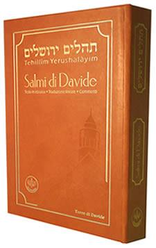 Salmi di Davide